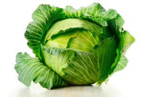 Как можно использовать капустный лист и мед от мастопатии