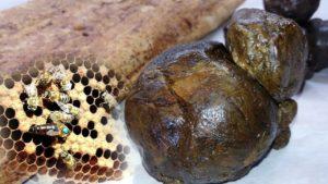 Какие лечебные свойства и противопоказания содержит прополис