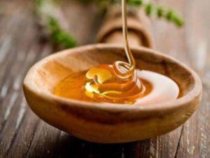 Описание, полезные свойства и противопоказания кориандрового меда