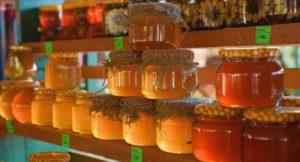 Полезные свойства и особенности эвкалиптового меда