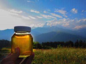 Полезные свойства и особенности горного меда