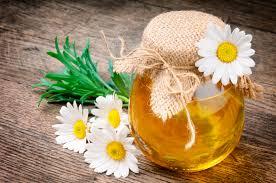Полезные свойства и особенности цветочного меда
