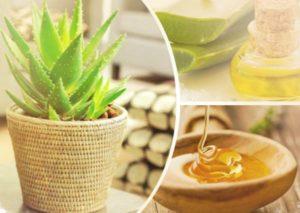 Как применять настойку из кагора, меда и алоэ