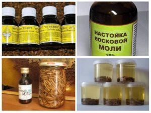 Какие лечебные свойства имеет настойка восковой моли