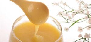 Лечебные свойства и как принимать маточное молочко