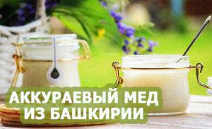 Полезные свойства и особенности аккураевого меда