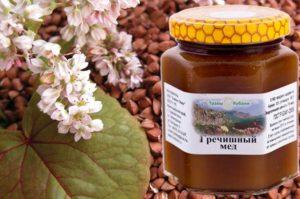 Полезные свойства и особенности гречишного меда