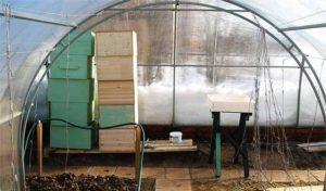 Как осуществляется зимовка пчел в теплице из поликарбоната