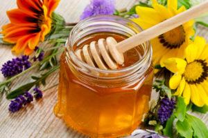 Можно ли и в каких случаях заменить сахар медом